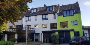 Zonder kleur geen leven | Nederlands Kleurinstituut